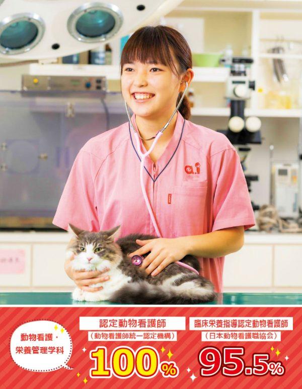 動物看護・栄養管理学科